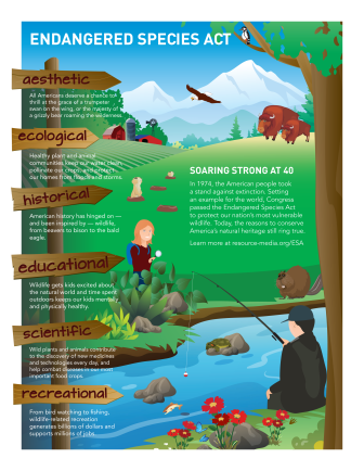 Endangered Species Act Infographic (Click to enlarge).