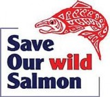 save our wild salmon