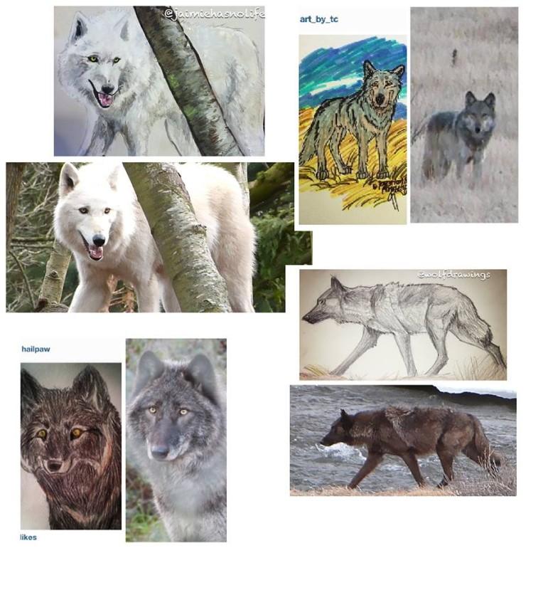 wolvesartcollage