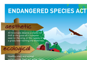 Endangered-Species-Act-turns-40-blog
