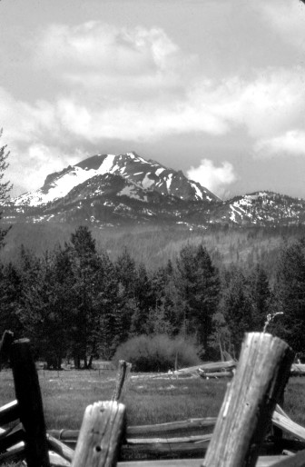 In January 2013, the wolf called OR7 was wandering in northern California near Lassen Peak, a volcano in the southern Cascades. JANE BRAXTON LITTLE
