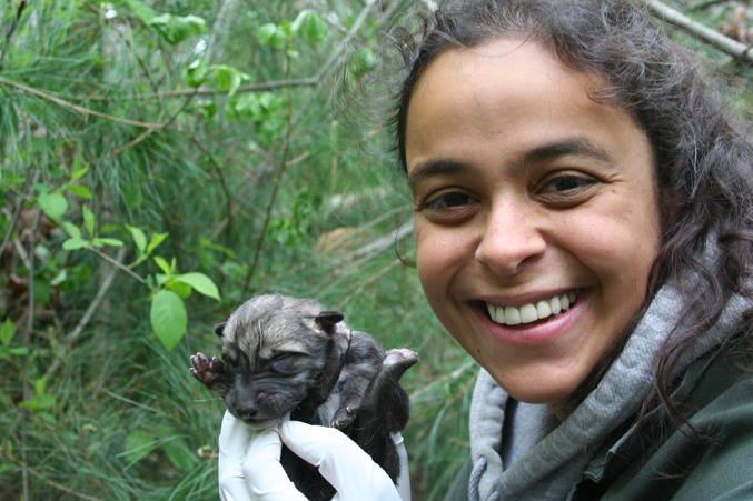 "Rebecca Bose with Lobo Pup • ""Being curator of these precious critically endangered lobos is a privilege, and holding this amazing new life in my hands is what it's all about."" – Rebecca Bose, Wolf Conservation Center Wolf Conservation Center's Curator, Rebecca Bose, bottle feeding one of F749's pups from 2013."
