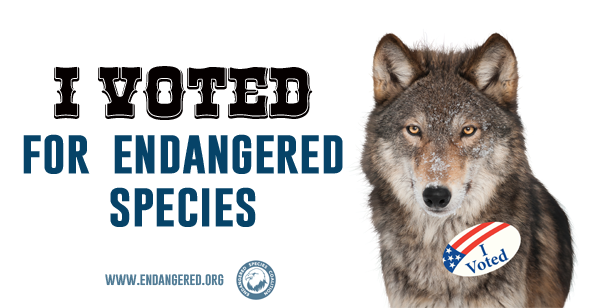 "<a href=""http://action.endangered.org/p/salsa/web/tellafriend/public/?tell_a_friend_KEY=12246"">I am an endangered species voter!</a>"
