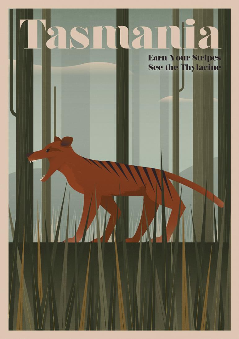 Thylacine (Tasmanian Tiger)