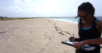 Here I am on a nesting beach in Barbuda, monitoring critically endangered hawksbill sea turtles (see above), one of over a thousand species currently listed under the ESA.
