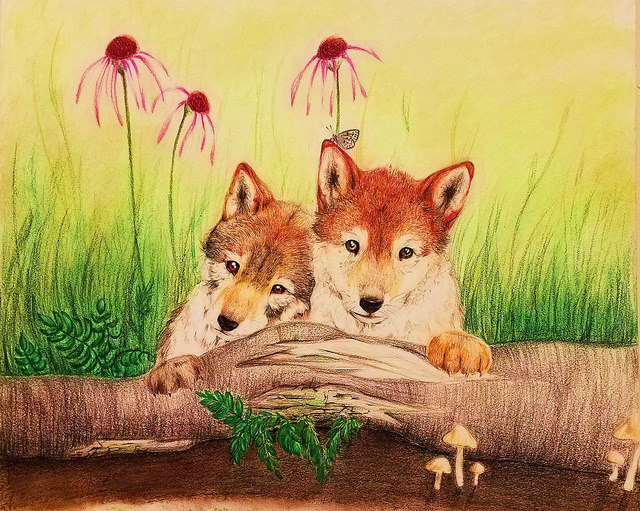 Enter the Saving Endangered Species Youth Art Contest