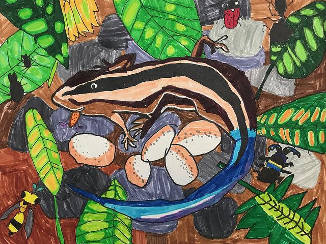 Saving Endangered Species Youth Art Contest – Endangered