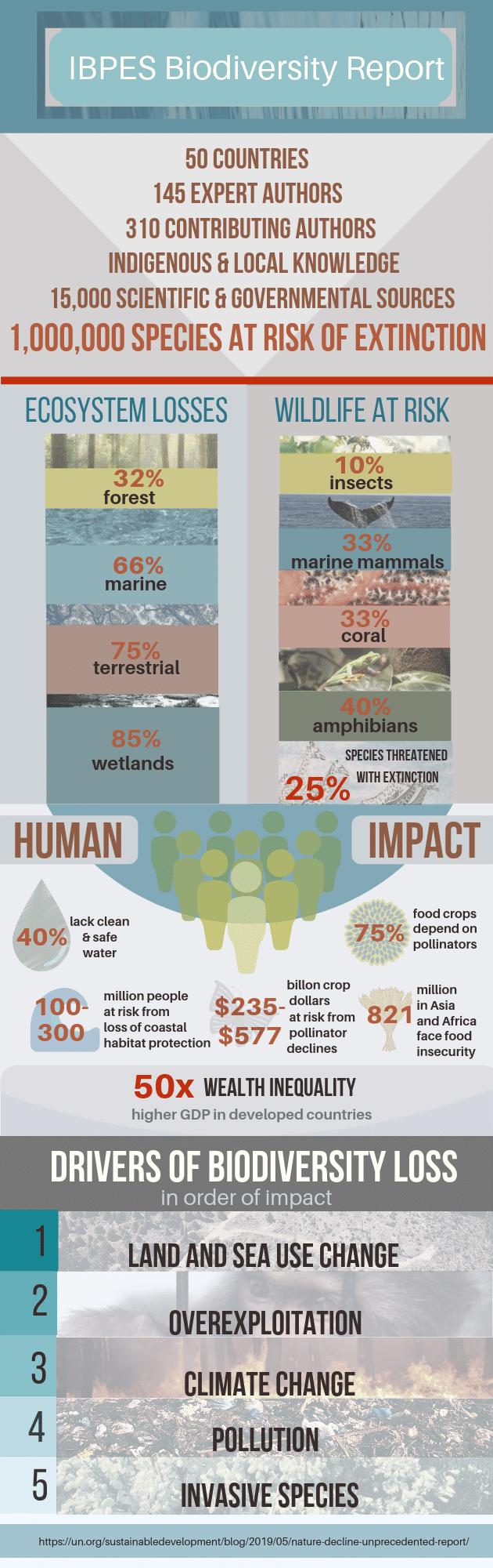 Extinction Infographic