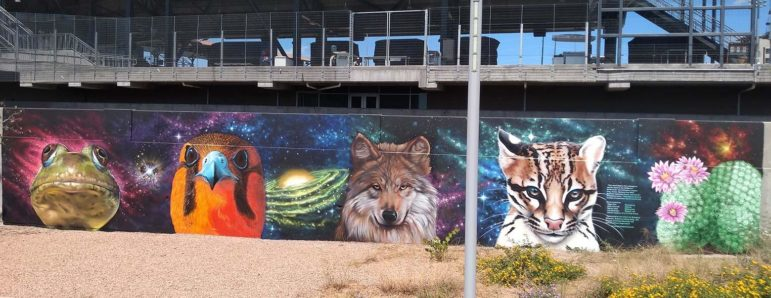 "Border Wildlife Mural, El Paso, TX, by Roger Peet, Jesus ""Cimi"" Alvarado, Martin ""Blast"" Zubia from El Paso, and Ivan ""Shack"" Melendez from Ciudad Juarez."