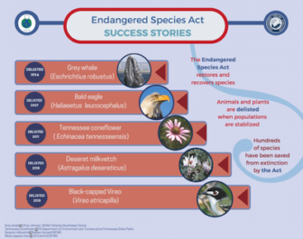 Infographic illustrating Endangered Species Act success stories