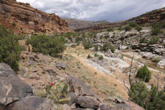 Rocky, mountainous trail in Colorado